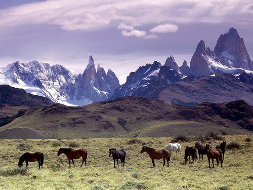 ¿argentina el mejor pais del mundo?